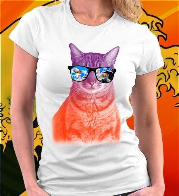 Котик в очках-рыбках
