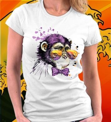 Шимпанзе в цветных очках