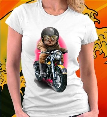 Кот-байкер