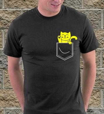 Котенок из кармана