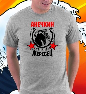 Анечкин жеребчик