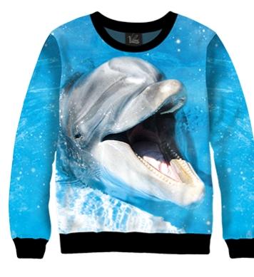 Свитшот Улыбка дельфина