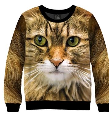 Свитшот Домашняя кошка