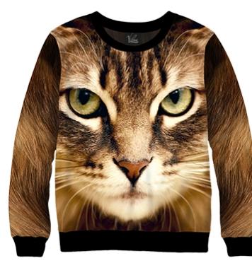 Свитшот Домашний кот