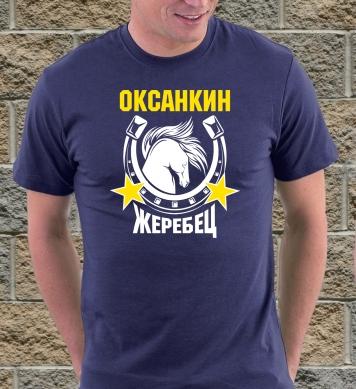 Оксанкин жеребчик