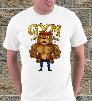 Gym пёс