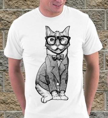 Кот в рубашке