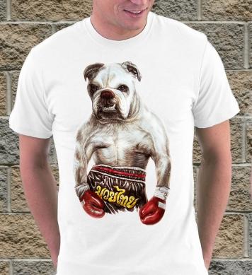 Собака-боксёр