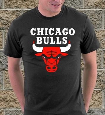 Команда Чикаго Буллз