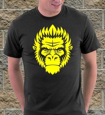 Морда обезьяны гориллы