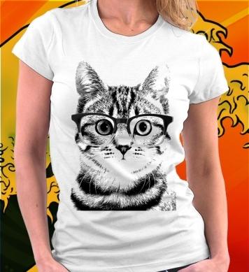 Рассудительный кот