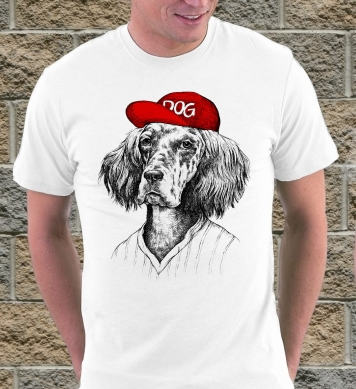 Dog in cap