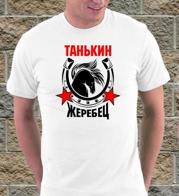Танькин жеребчик