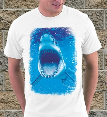 Акула охотится
