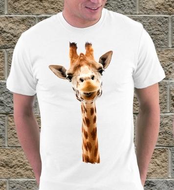 Взор жирафа