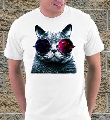 Кот в космических очках