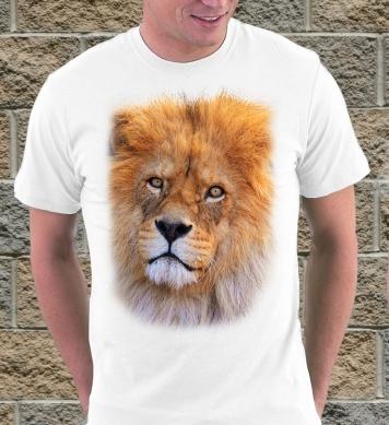 Львиный взор
