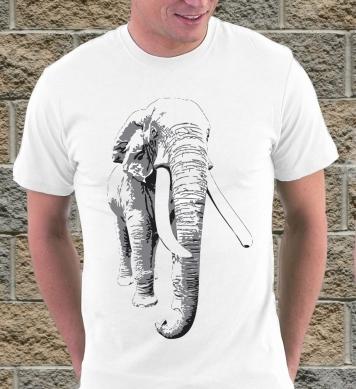 Большой серый слон