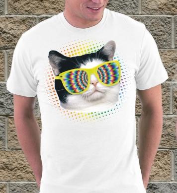 Кошка в радужных очках