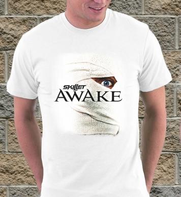 Скиллет awake