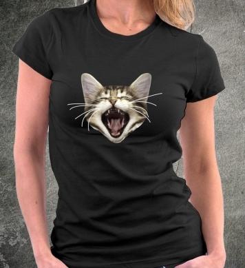 Зевающий котёнок