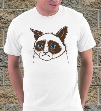 Известный грустный кот