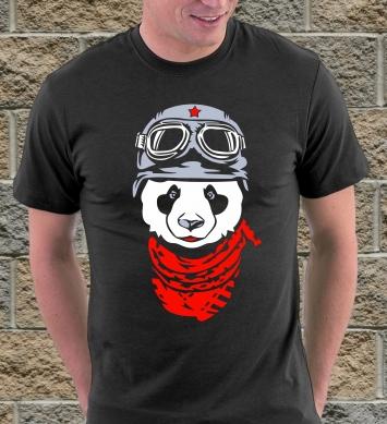 Панда летчик